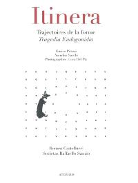 Itinera : trajectoires de la forme, Tragedia Endogonidia : Romeo Castellucci, Societas Raffaello Sanzio