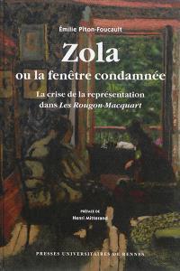 Zola ou La fenêtre condamnée : la crise de la représentation dans les Rougon-Macquart